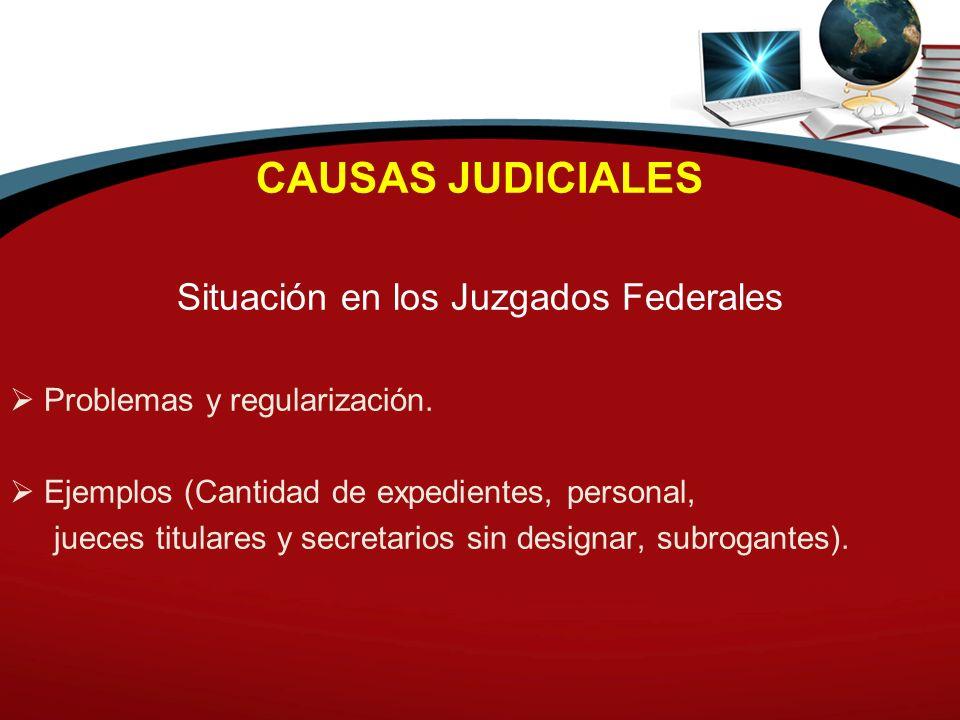 CAUSAS JUDICIALES Situación en los Juzgados Federales Problemas y regularización. Ejemplos (Cantidad de expedientes, personal, jueces titulares y secr