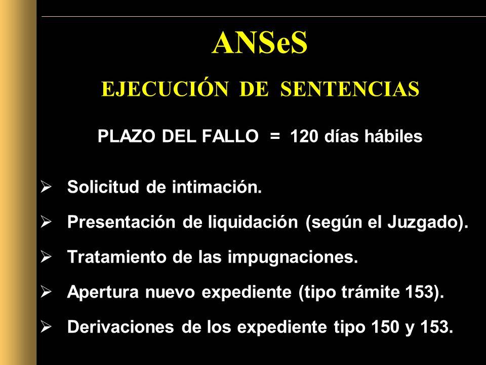 ANSeS EJECUCIÓN DE SENTENCIAS PLAZO DEL FALLO = 120 días hábiles Solicitud de intimación. Presentación de liquidación (según el Juzgado). Tratamiento
