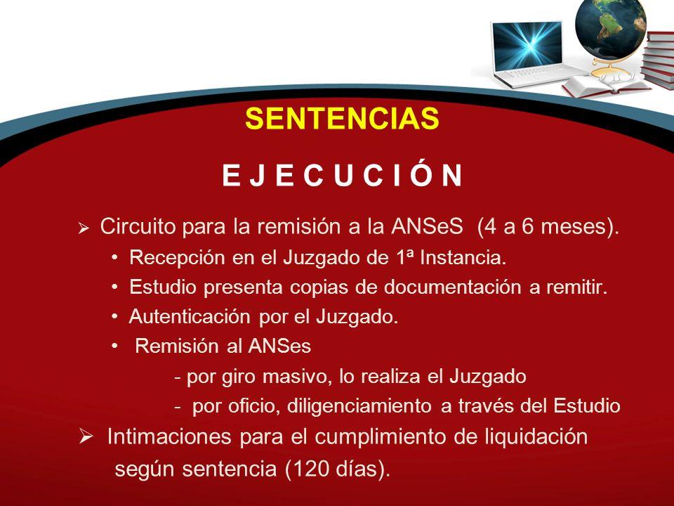 SENTENCIAS E J E C U C I Ó N Circuito para la remisión a la ANSeS (4 a 6 meses). Recepción en el Juzgado de 1ª Instancia. Estudio presenta copias de d