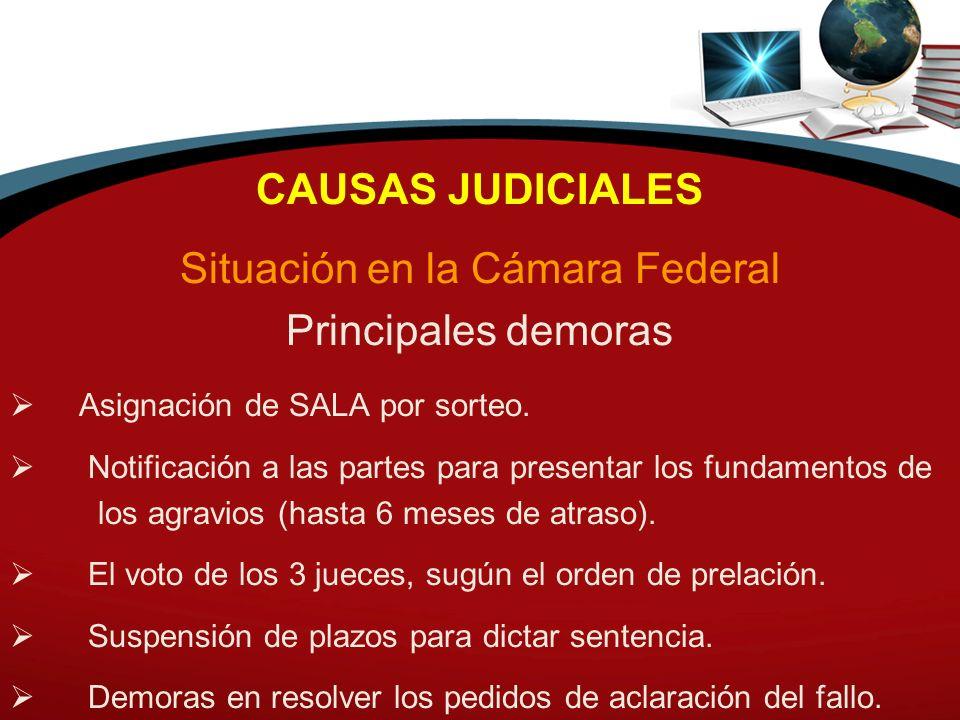 CAUSAS JUDICIALES Situación en la Cámara Federal Principales demoras Asignación de SALA por sorteo. Notificación a las partes para presentar los funda