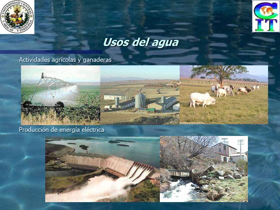 Usos del agua Actividades agrícolas y ganaderas Producción de energía eléctrica