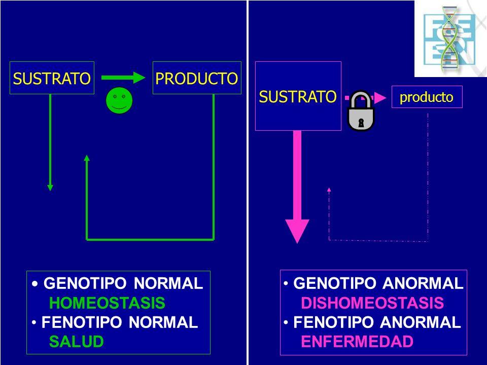 SUSTRATO producto SUSTRATOPRODUCTO GENOTIPO NORMAL HOMEOSTASIS FENOTIPO NORMAL SALUD GENOTIPO ANORMAL DISHOMEOSTASIS FENOTIPO ANORMAL ENFERMEDAD