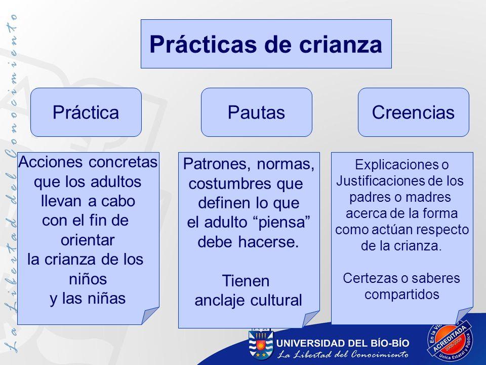 Prácticas de crianza PrácticaPautasCreencias Acciones concretas que los adultos llevan a cabo con el fin de orientar la crianza de los niños y las niñ
