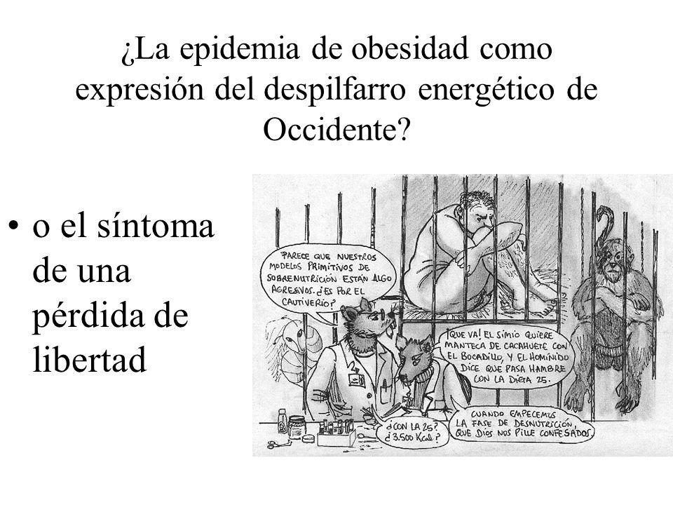 ¿La epidemia de obesidad como expresión del despilfarro energético de Occidente.