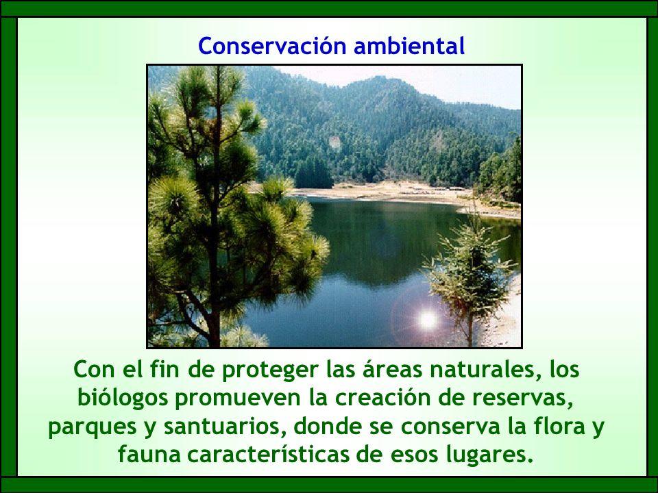 Conservación ambiental Con el fin de proteger las áreas naturales, los biólogos promueven la creación de reservas, parques y santuarios, donde se conserva la flora y fauna características de esos lugares.