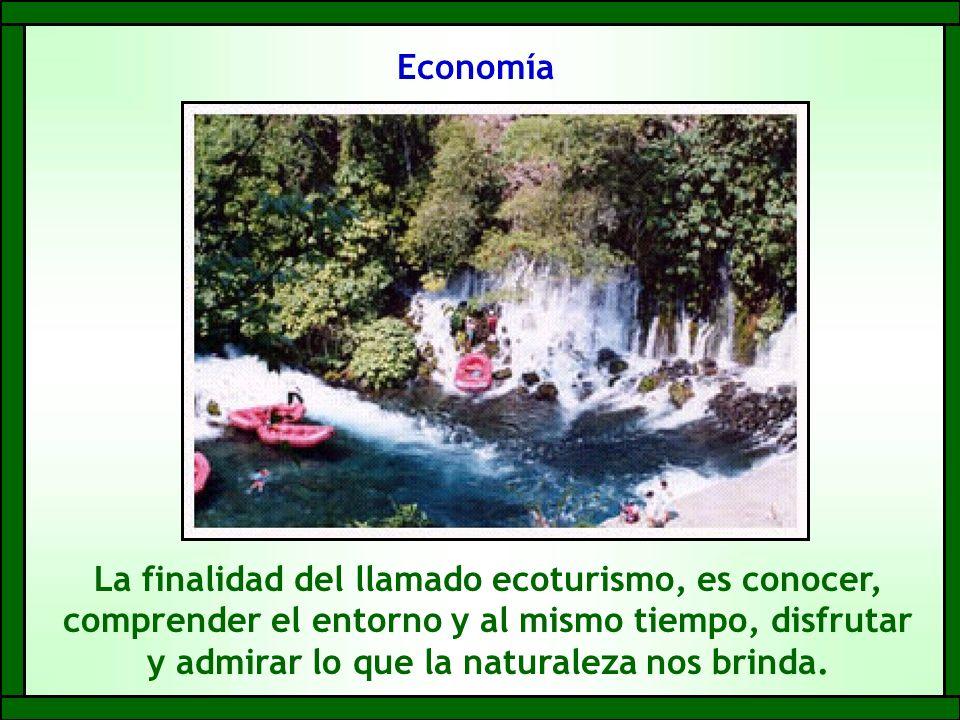 Economía La finalidad del llamado ecoturismo, es conocer, comprender el entorno y al mismo tiempo, disfrutar y admirar lo que la naturaleza nos brinda.