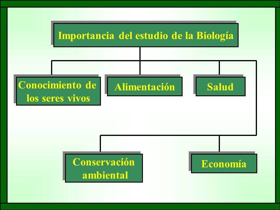 Importancia del estudio de la Biología Conocimiento de los seres vivos Conocimiento de los seres vivos Conservación ambiental Conservación ambiental Alimentación Salud Economía