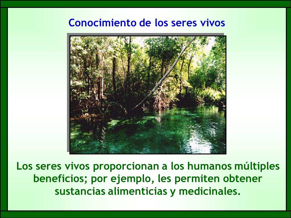 Conocimiento de los seres vivos Los seres vivos proporcionan a los humanos múltiples beneficios; por ejemplo, les permiten obtener sustancias alimenticias y medicinales.