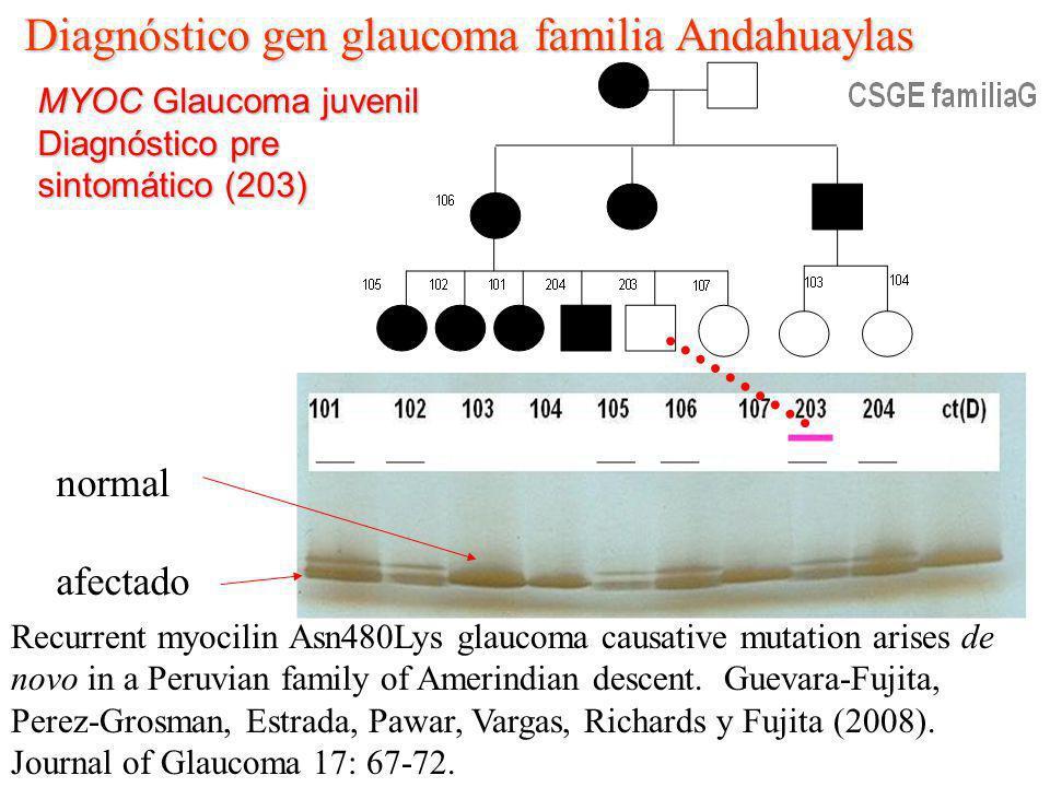Diagnóstico gen glaucoma familia Andahuaylas MYOC Glaucoma juvenil Diagnóstico pre sintomático (203) Recurrent myocilin Asn480Lys glaucoma causative m