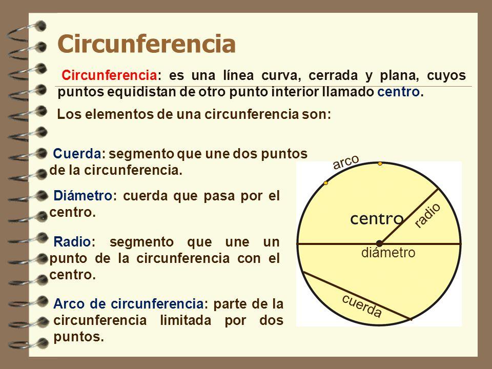 Circunferencia Circunferencia: es una línea curva, cerrada y plana, cuyos puntos equidistan de otro punto interior llamado centro. diámetro radio Los