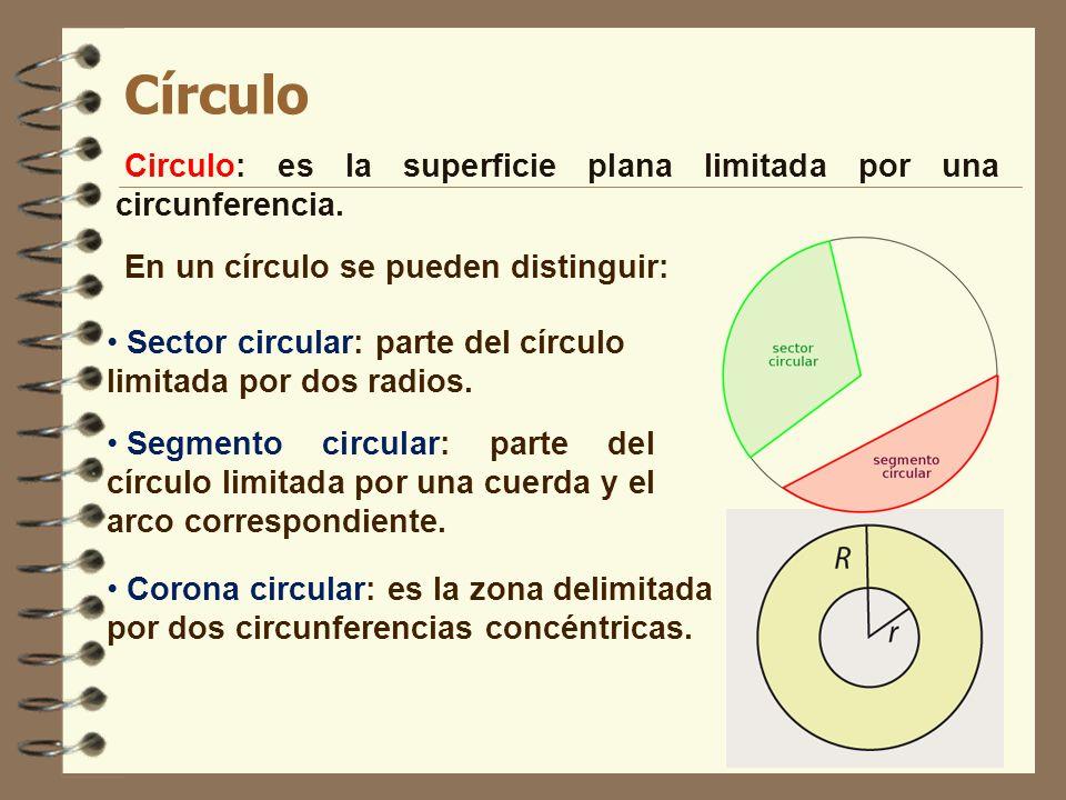 Círculo Circulo: es la superficie plana limitada por una circunferencia. En un círculo se pueden distinguir: Segmento circular: parte del círculo limi