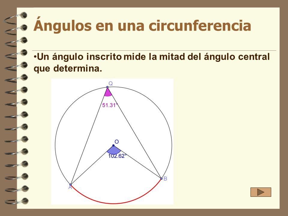 Ángulos en una circunferencia Un ángulo inscrito mide la mitad del ángulo central que determina.