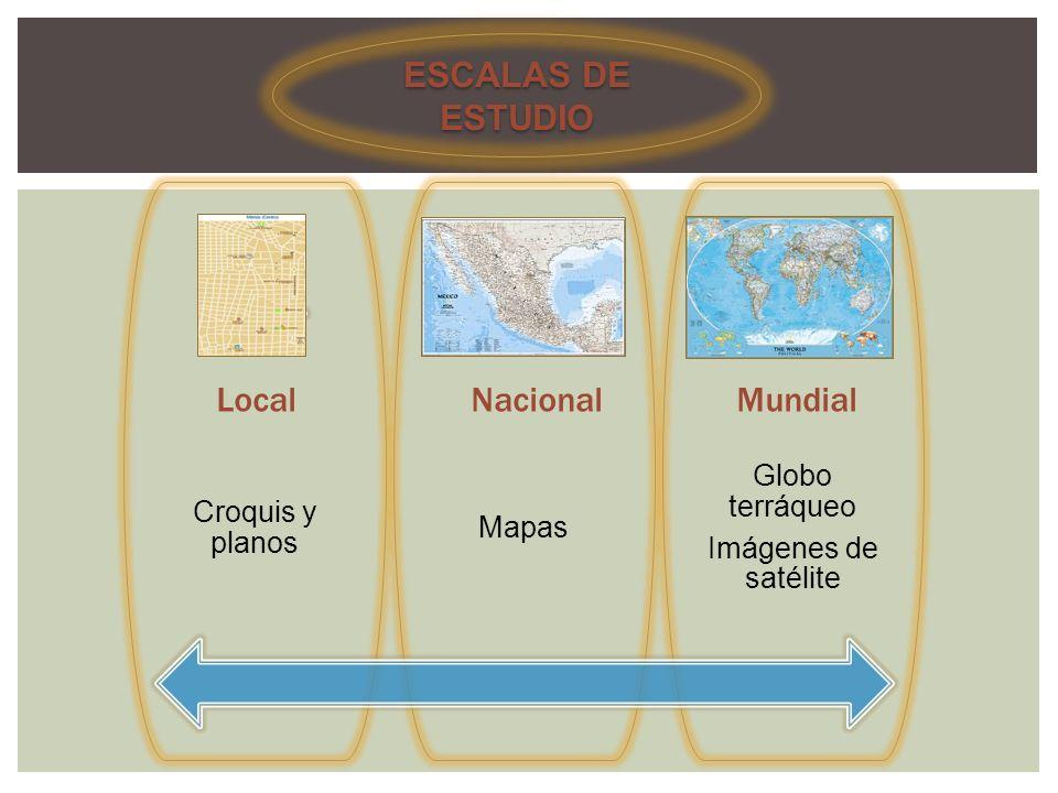 ESCALAS DE ESTUDIO LocalNacionalMundial