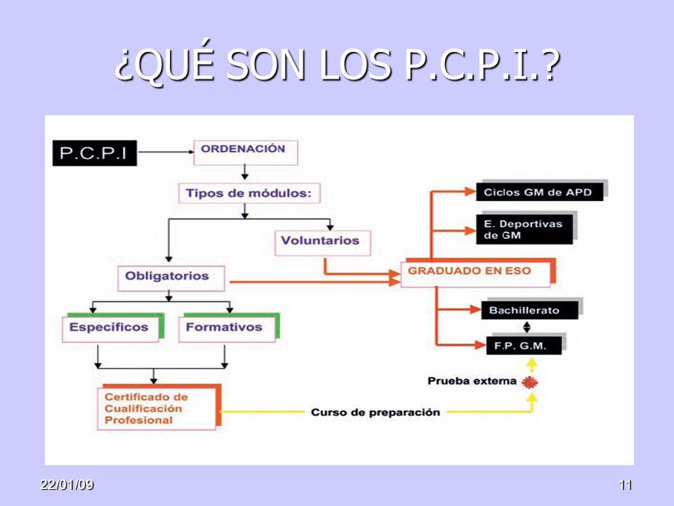 22/01/0911 ¿QUÉ SON LOS P.C.P.I.?