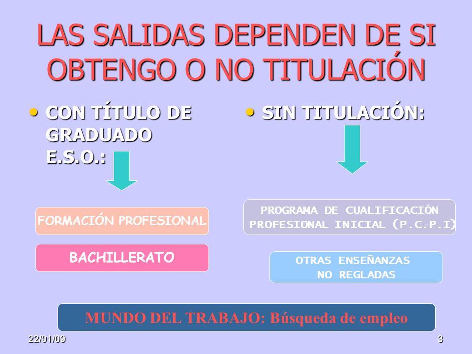 3 LAS SALIDAS DEPENDEN DE SI OBTENGO O NO TITULACIÓN CON TÍTULO DE GRADUADO E.S.O.: CON TÍTULO DE GRADUADO E.S.O.: SIN TITULACIÓN: SIN TITULACIÓN: FORMACIÓN PROFESIONAL BACHILLERATO MUNDO DEL TRABAJO: Búsqueda de empleo PROGRAMA DE CUALIFICACIÓN PROFESIONAL INICIAL (P.C.P.I) OTRAS ENSEÑANZAS NO REGLADAS