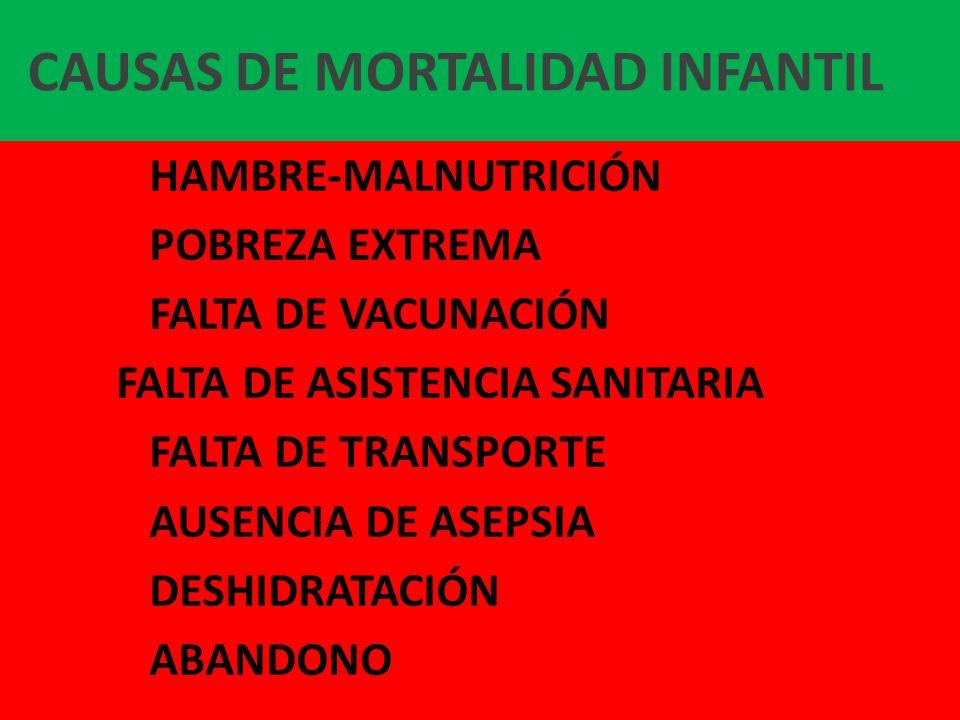 CAUSAS DE MORTALIDAD INFANTIL HAMBRE-MALNUTRICIÓN POBREZA EXTREMA FALTA DE VACUNACIÓN FALTA DE ASISTENCIA SANITARIA FALTA DE TRANSPORTE AUSENCIA DE AS