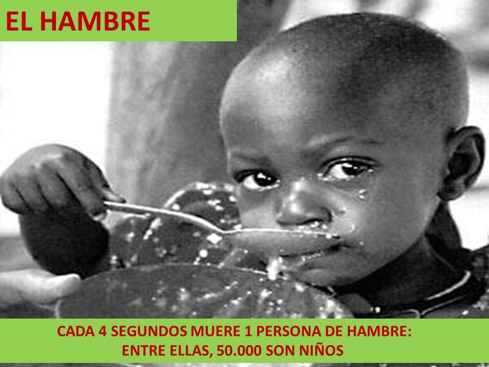 EL HAMBRE CADA 4 SEGUNDOS MUERE 1 PERSONA DE HAMBRE: ENTRE ELLAS, 50.000 SON NIÑOS