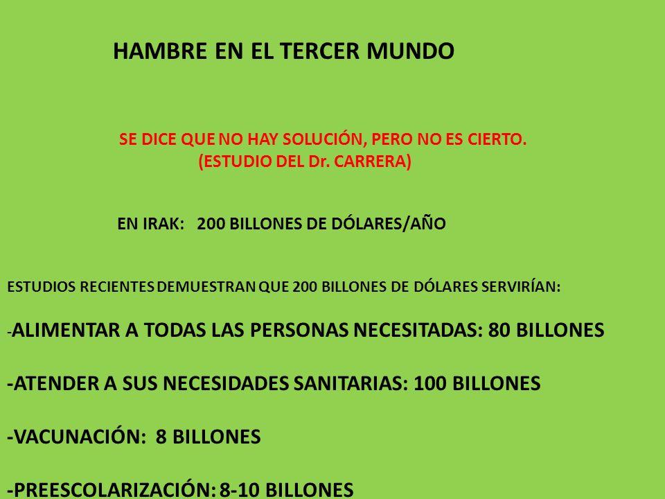 HAMBRE EN EL TERCER MUNDO SE DICE QUE NO HAY SOLUCIÓN, PERO NO ES CIERTO. (ESTUDIO DEL Dr. CARRERA) EN IRAK: 200 BILLONES DE DÓLARES/AÑO ESTUDIOS RECI