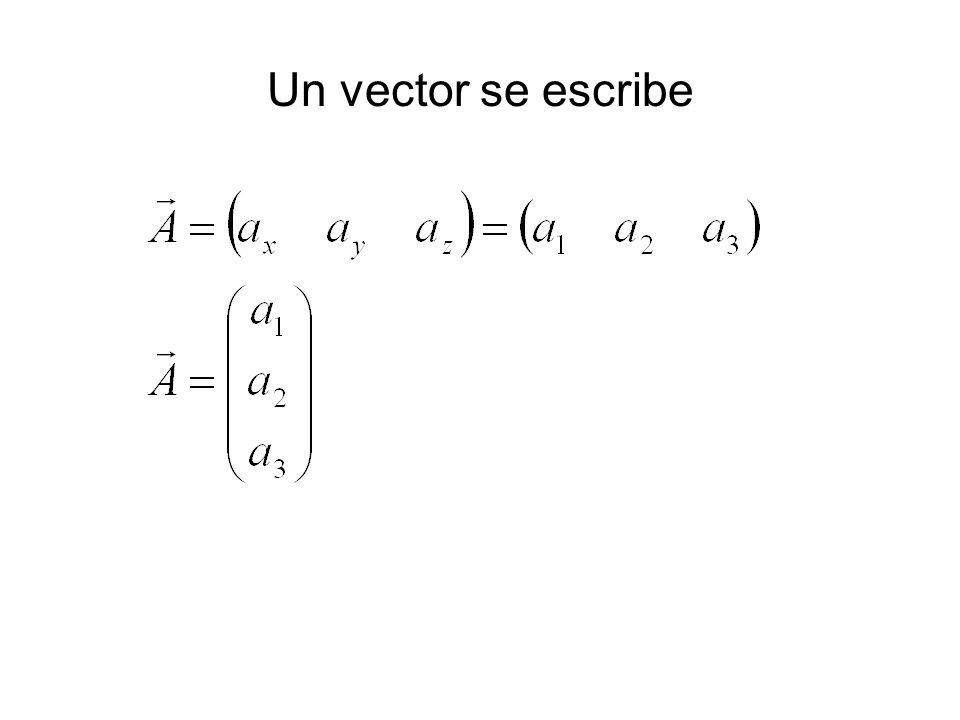 Un vector se escribe