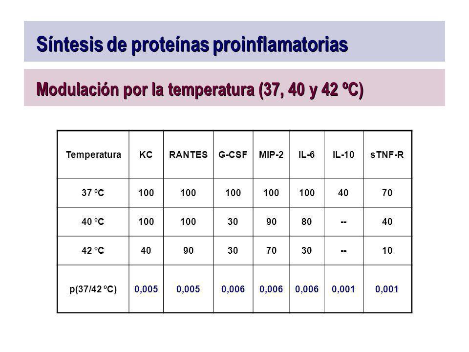 Síntesis de proteínas proinflamatorias Modulación por la temperatura (37, 40 y 42 ºC) TemperaturaKCRANTESG-CSFMIP-2IL-6IL-10sTNF-R 37 ºC100 4070 40 ºC