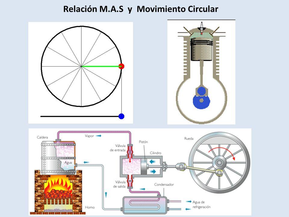 Relación M.A.S y Movimiento Circular