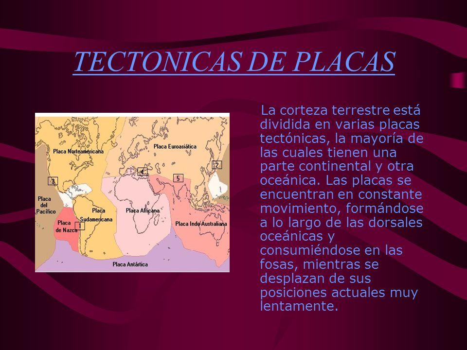 TECTONICAS DE PLACAS La corteza terrestre está dividida en varias placas tectónicas, la mayoría de las cuales tienen una parte continental y otra oceá