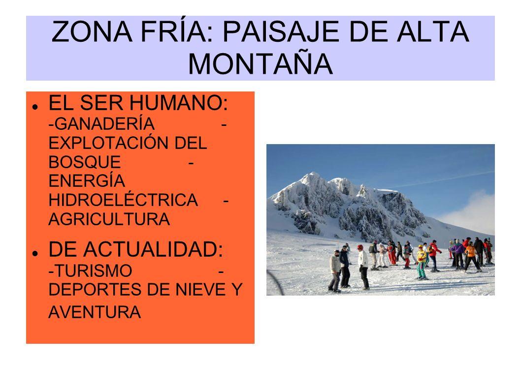 ZONA FRÍA: PAISAJE DE ALTA MONTAÑA EL SER HUMANO: -GANADERÍA - EXPLOTACIÓN DEL BOSQUE - ENERGÍA HIDROELÉCTRICA - AGRICULTURA DE ACTUALIDAD: -TURISMO -