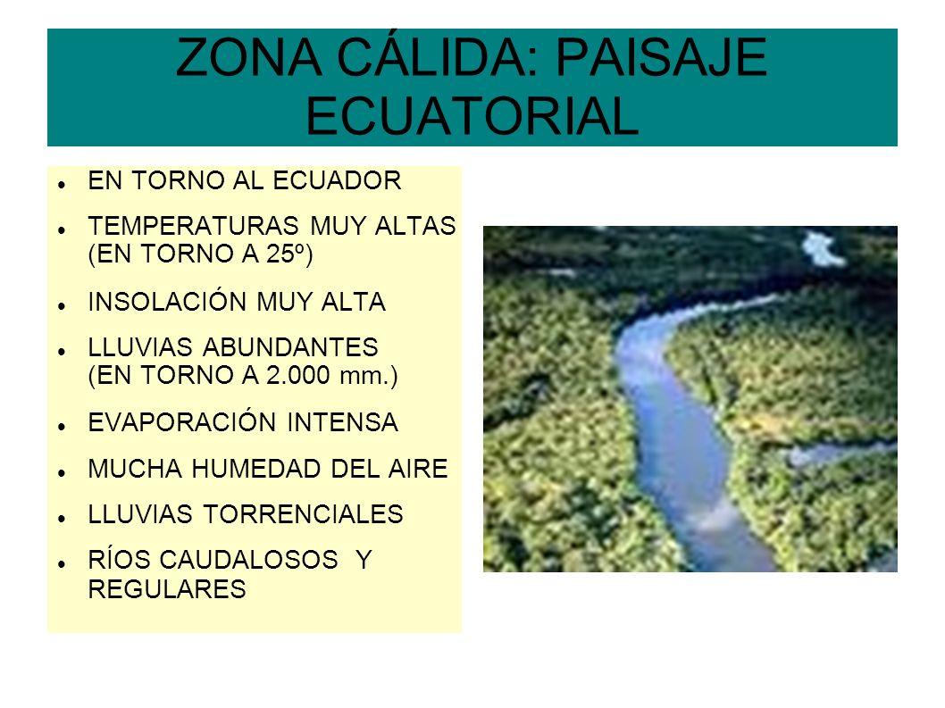 ZONA CÁLIDA: PAISAJE ECUATORIAL EN TORNO AL ECUADOR TEMPERATURAS MUY ALTAS (EN TORNO A 25º) INSOLACIÓN MUY ALTA LLUVIAS ABUNDANTES (EN TORNO A 2.000 m