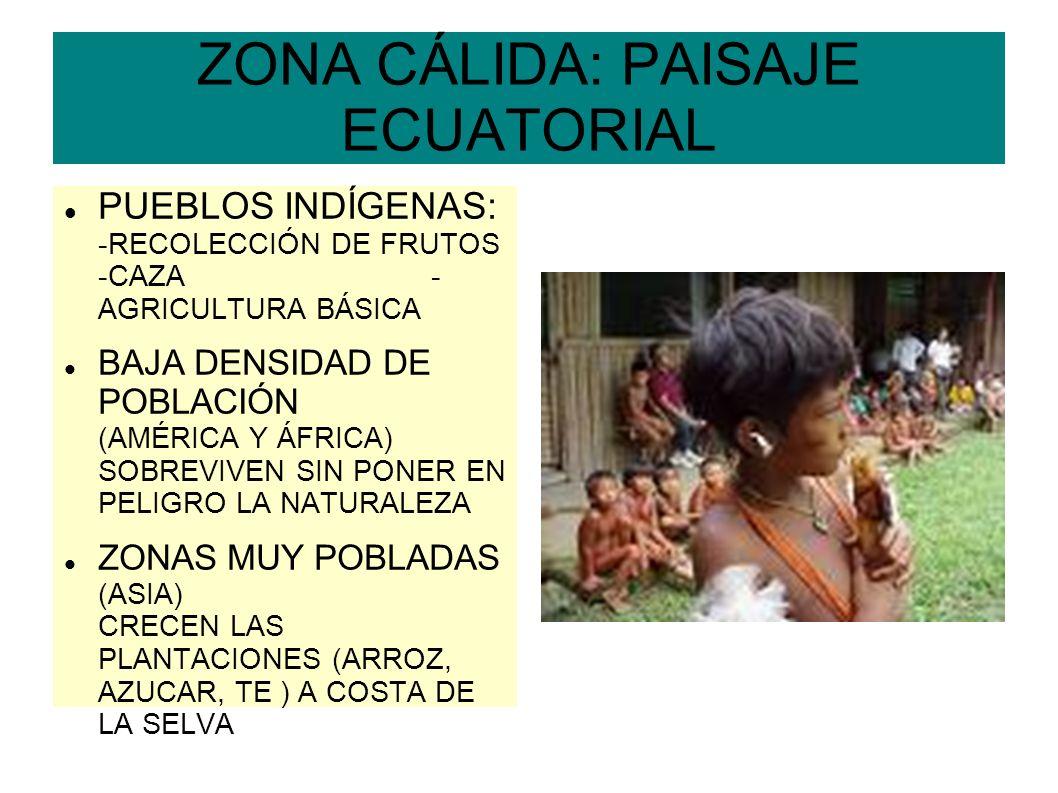 ZONA CÁLIDA: PAISAJE ECUATORIAL PUEBLOS INDÍGENAS: -RECOLECCIÓN DE FRUTOS -CAZA - AGRICULTURA BÁSICA BAJA DENSIDAD DE POBLACIÓN (AMÉRICA Y ÁFRICA) SOB