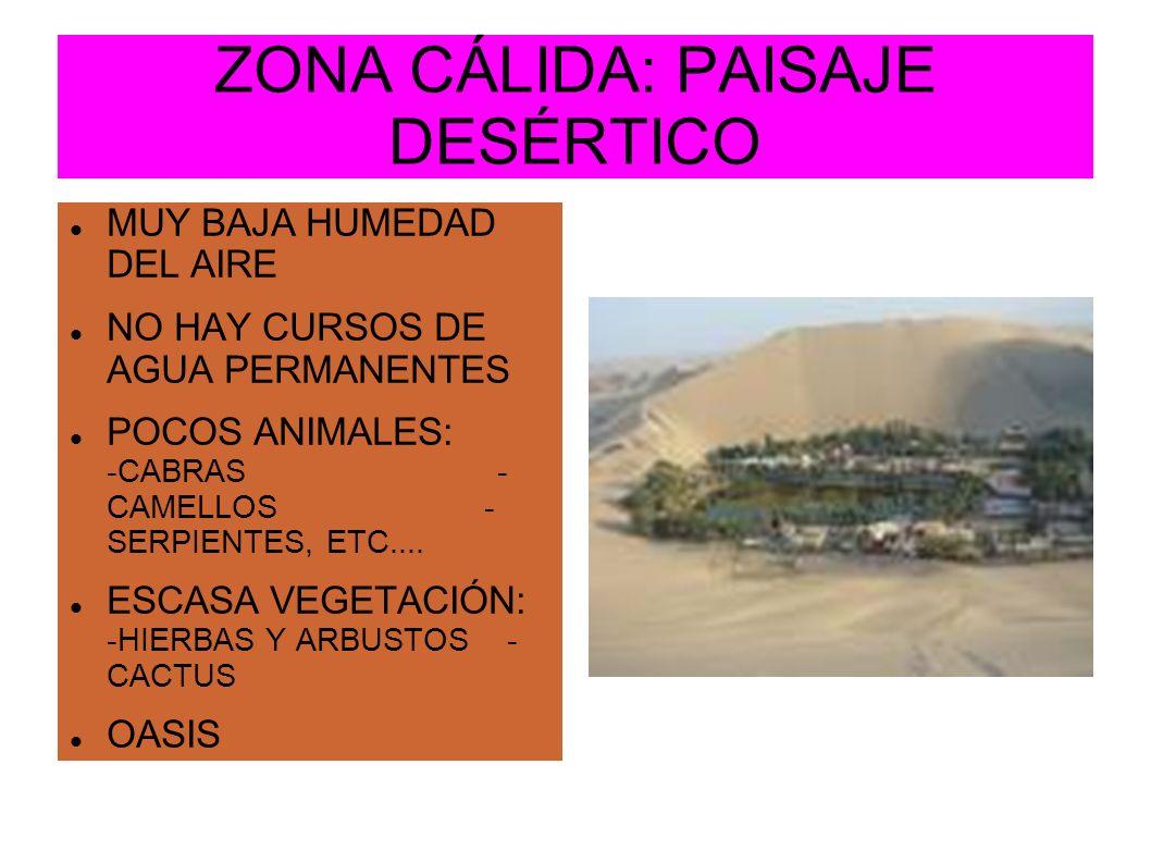 ZONA CÁLIDA: PAISAJE DESÉRTICO MUY BAJA HUMEDAD DEL AIRE NO HAY CURSOS DE AGUA PERMANENTES POCOS ANIMALES: -CABRAS - CAMELLOS - SERPIENTES, ETC.... ES