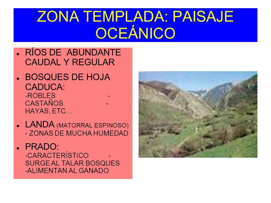ZONA TEMPLADA: PAISAJE OCEÁNICO RÍOS DE ABUNDANTE CAUDAL Y REGULAR BOSQUES DE HOJA CADUCA: -ROBLES - CASTAÑOS - HAYAS, ETC... LANDA (MATORRAL ESPINOSO