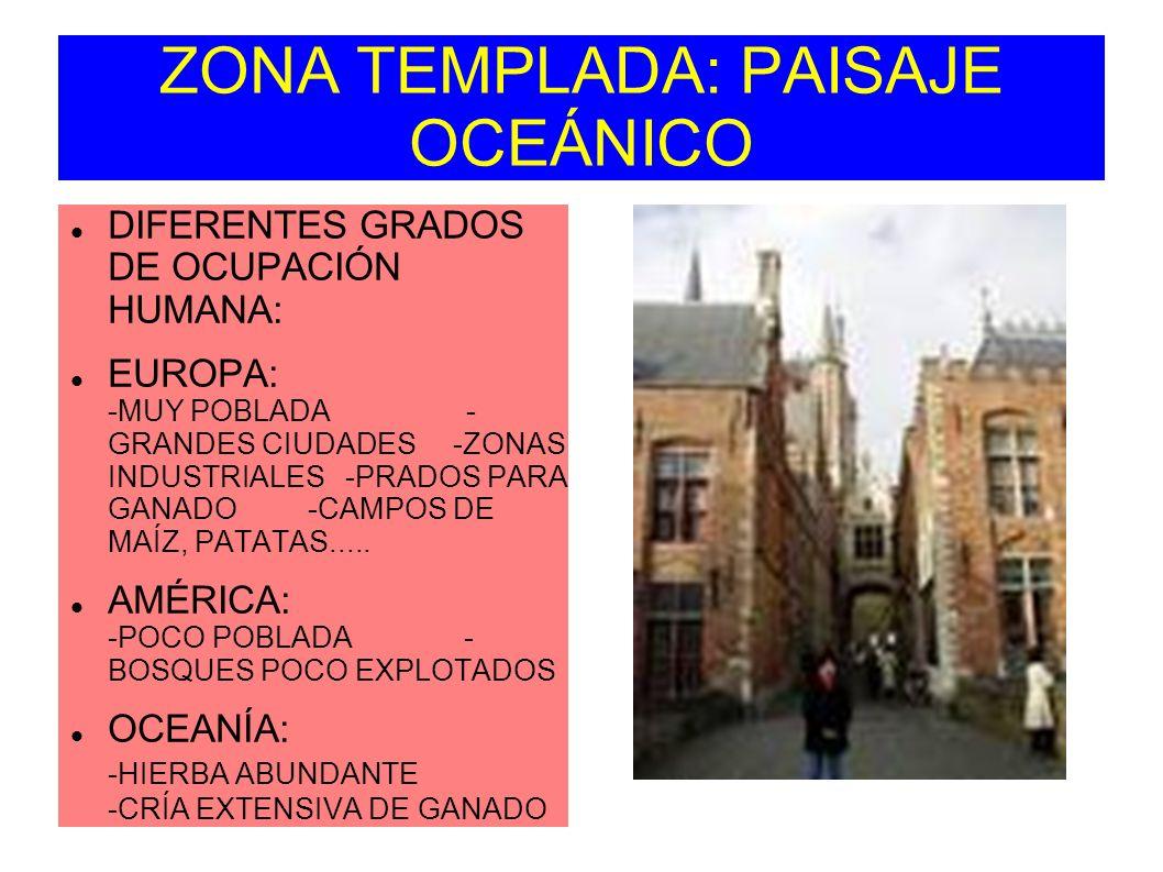 ZONA TEMPLADA: PAISAJE OCEÁNICO DIFERENTES GRADOS DE OCUPACIÓN HUMANA: EUROPA: -MUY POBLADA - GRANDES CIUDADES -ZONAS INDUSTRIALES -PRADOS PARA GANADO