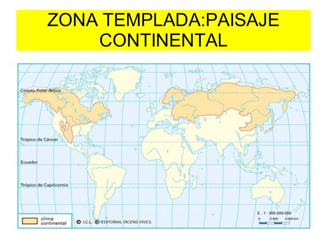 ZONA TEMPLADA:PAISAJE CONTINENTAL