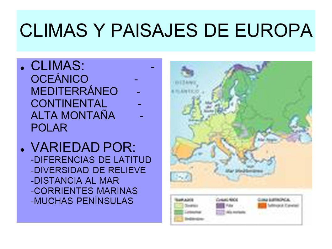 CLIMAS Y PAISAJES DE EUROPA CLIMAS: - OCEÁNICO - MEDITERRÁNEO - CONTINENTAL - ALTA MONTAÑA - POLAR VARIEDAD POR: -DIFERENCIAS DE LATITUD -DIVERSIDAD D