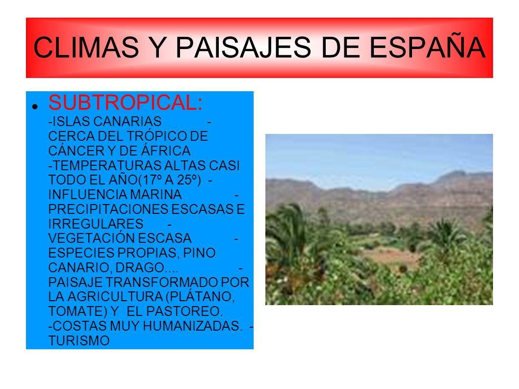 CLIMAS Y PAISAJES DE ESPAÑA SUBTROPICAL: -ISLAS CANARIAS - CERCA DEL TRÓPICO DE CÁNCER Y DE ÁFRICA -TEMPERATURAS ALTAS CASI TODO EL AÑO(17º A 25º) - I