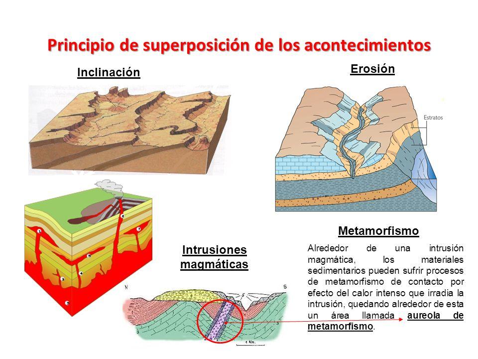 Principio de superposición de los acontecimientos Inclinación Intrusiones magmáticas Erosión Metamorfismo Alrededor de una intrusión magmática, los ma