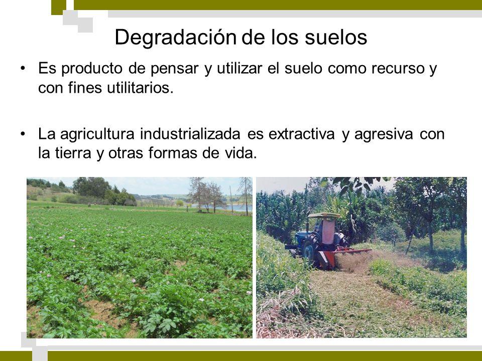 Degradación de los suelos Es producto de pensar y utilizar el suelo como recurso y con fines utilitarios. La agricultura industrializada es extractiva