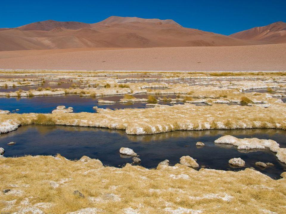 Litosfera La litosfera (lithos = rocas) que comprende la corteza y una pequeña parte del manto, esta constituida por una gran variedad de rocas.