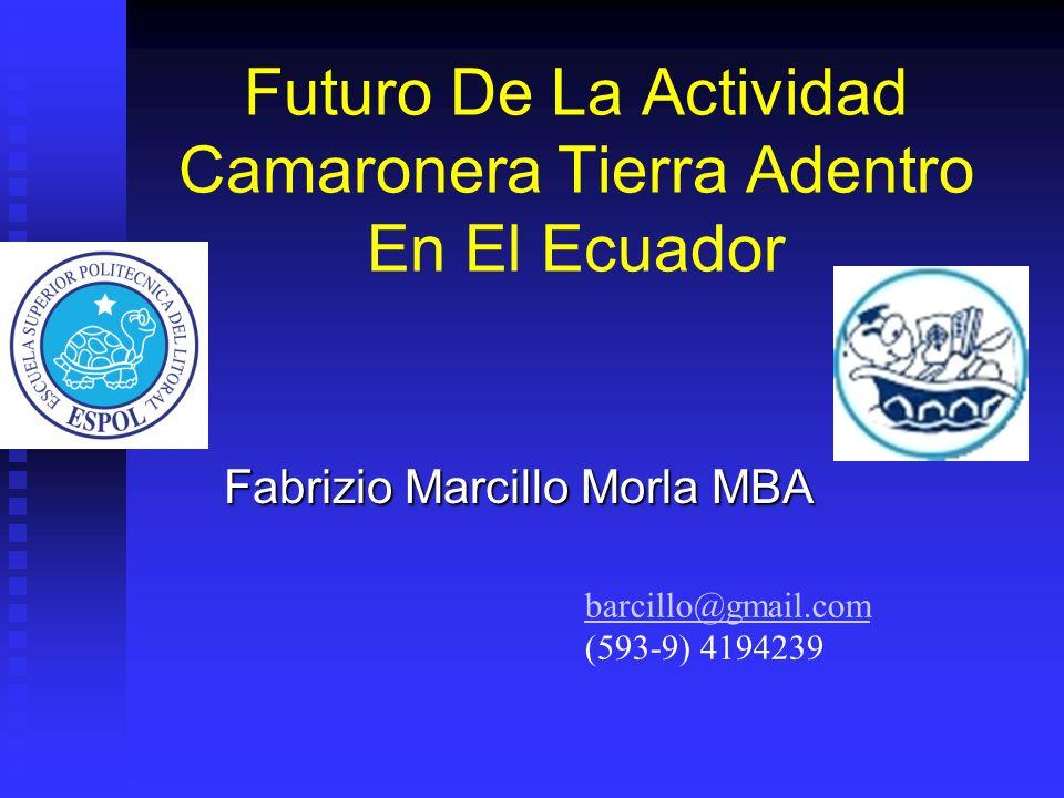 Futuro De La Actividad Camaronera Tierra Adentro En El Ecuador Fabrizio Marcillo Morla MBA barcillo@gmail.com (593-9) 4194239