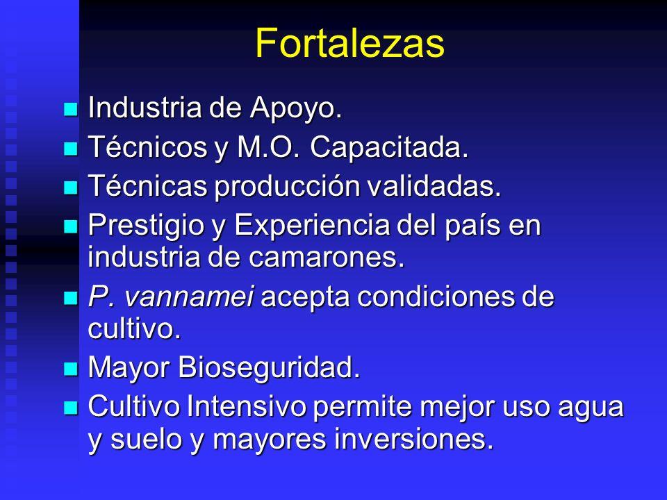 Fortalezas Industria de Apoyo. Industria de Apoyo. Técnicos y M.O. Capacitada. Técnicos y M.O. Capacitada. Técnicas producción validadas. Técnicas pro