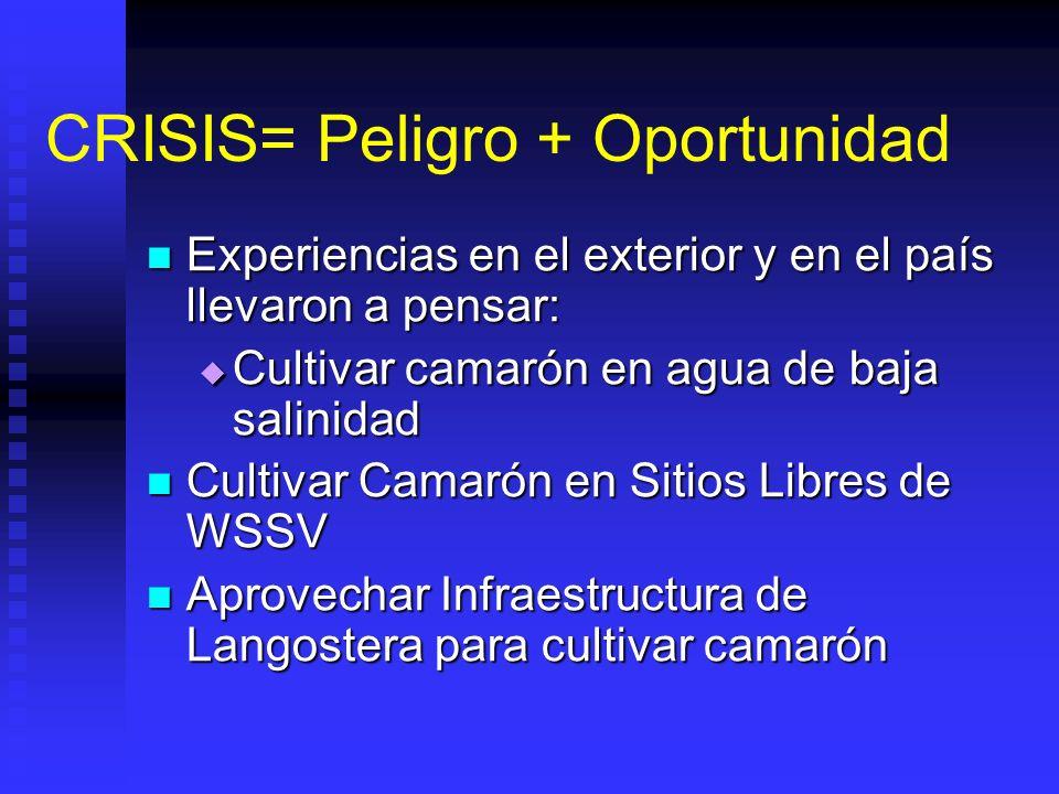 CRISIS= Peligro + Oportunidad Experiencias en el exterior y en el país llevaron a pensar: Experiencias en el exterior y en el país llevaron a pensar: