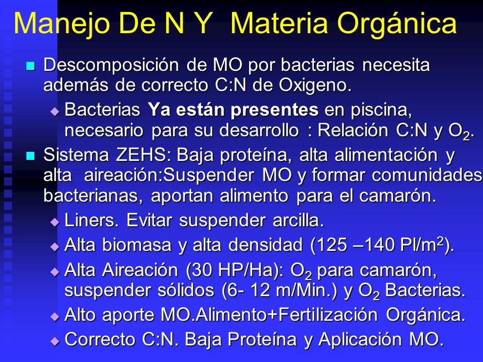 Manejo De N Y Materia Orgánica Descomposición de MO por bacterias necesita además de correcto C:N de Oxigeno. Descomposición de MO por bacterias neces