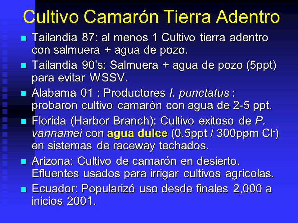 Experiencias En Agua Dulce Ecuador: cultivo en aguas de baja salinidad: Estuario del Río Guayas, Río Chone, etc.