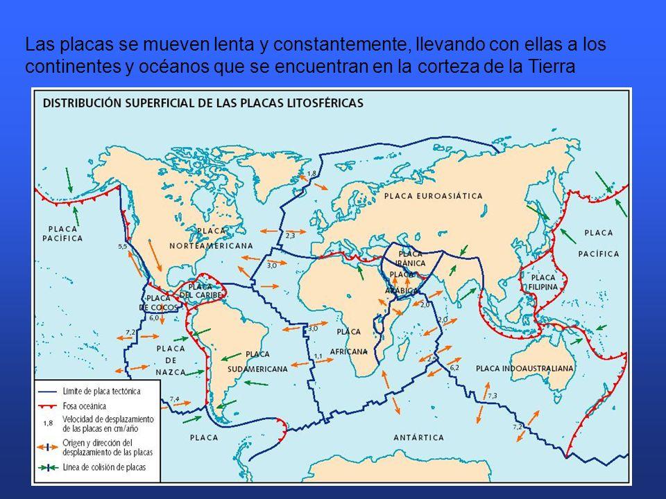 Las placas se mueven lenta y constantemente, llevando con ellas a los continentes y océanos que se encuentran en la corteza de la Tierra