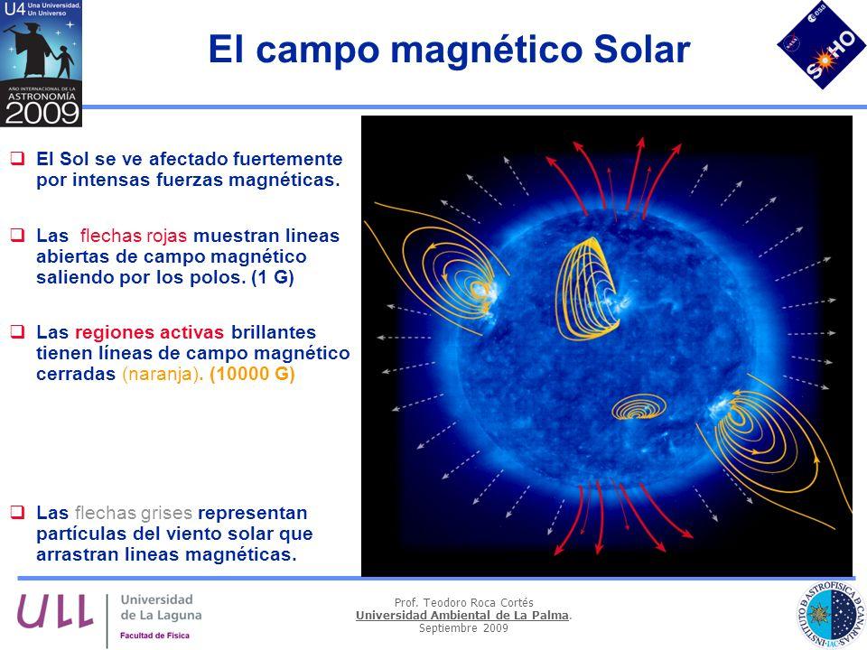Prof. Teodoro Roca Cortés Universidad Ambiental de La Palma. Septiembre 2009 El campo magnético Solar El Sol se ve afectado fuertemente por intensas f