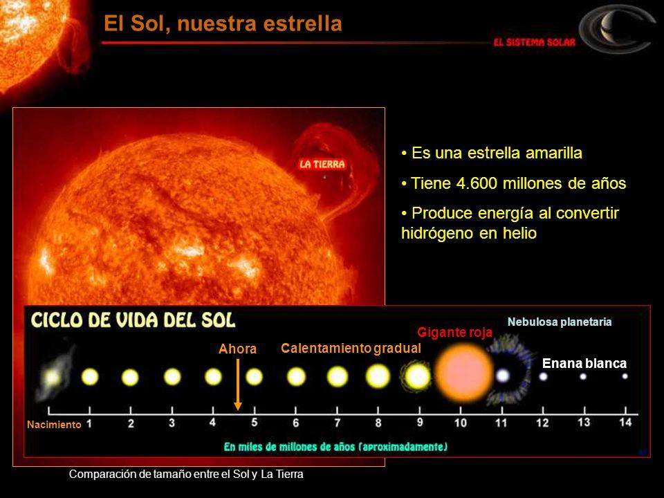 Es una estrella amarilla Tiene 4.600 millones de años Produce energía al convertir hidrógeno en helio Comparación de tamaño entre el Sol y La Tierra E