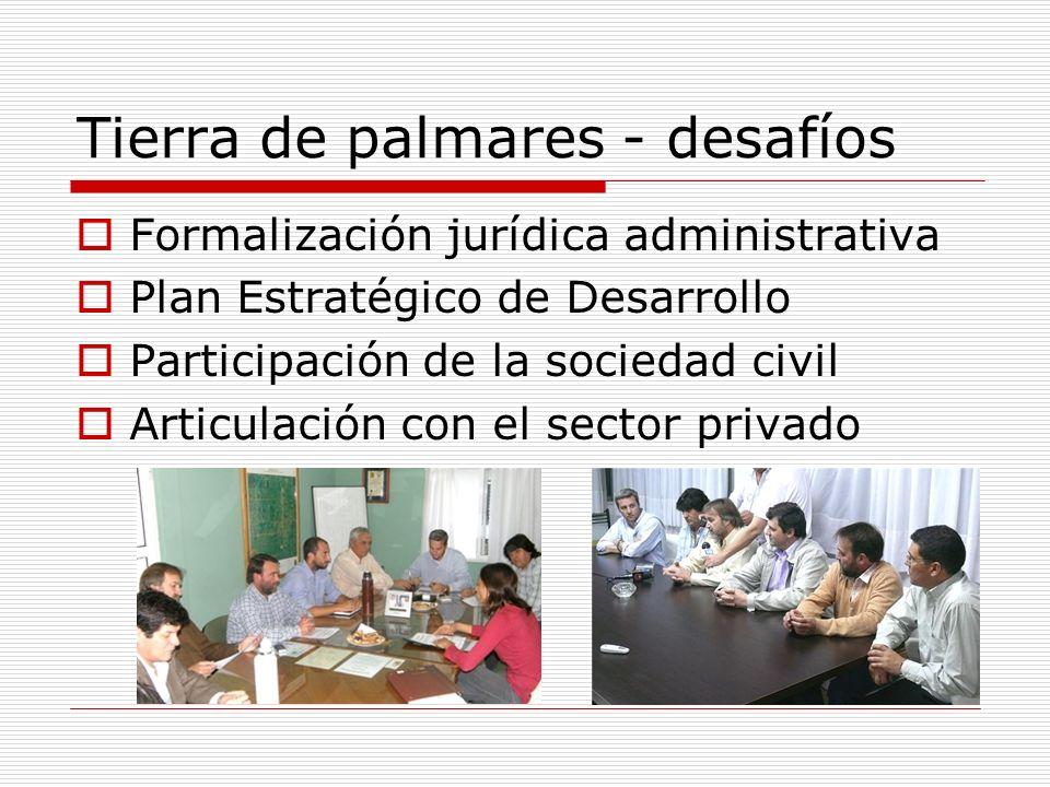 Tierra de palmares - desafíos Formalización jurídica administrativa Plan Estratégico de Desarrollo Participación de la sociedad civil Articulación con