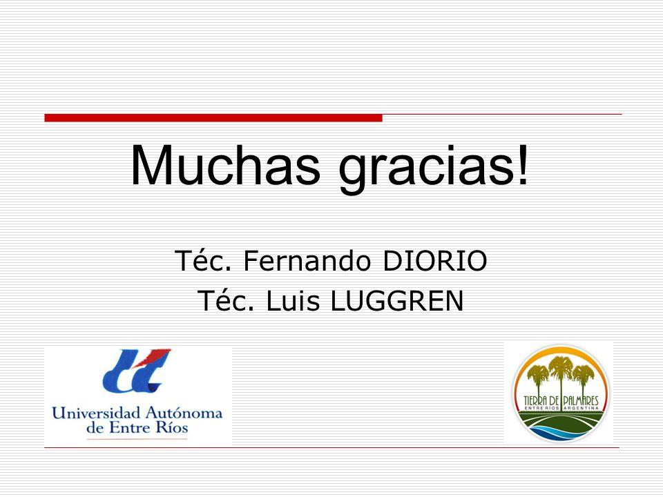 Muchas gracias! Téc. Fernando DIORIO Téc. Luis LUGGREN