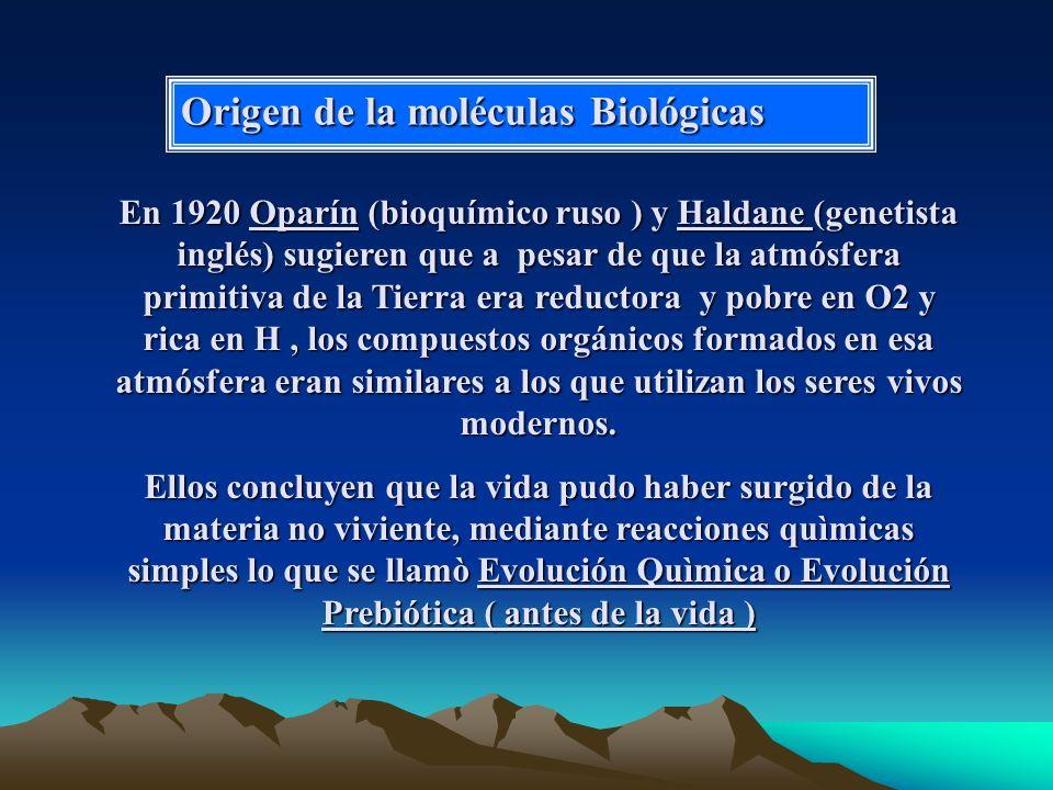 Origen de la moléculas Biológicas En 1920 Oparín (bioquímico ruso ) y Haldane (genetista inglés) sugieren que a pesar de que la atmósfera primitiva de la Tierra era reductora y pobre en O2 y rica en H, los compuestos orgánicos formados en esa atmósfera eran similares a los que utilizan los seres vivos modernos.