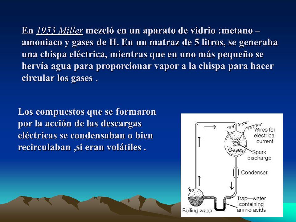 En 1953 Miller mezcló en un aparato de vidrio :metano – amoniaco y gases de H.